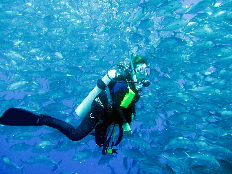 Best Scuba Diving Destinations