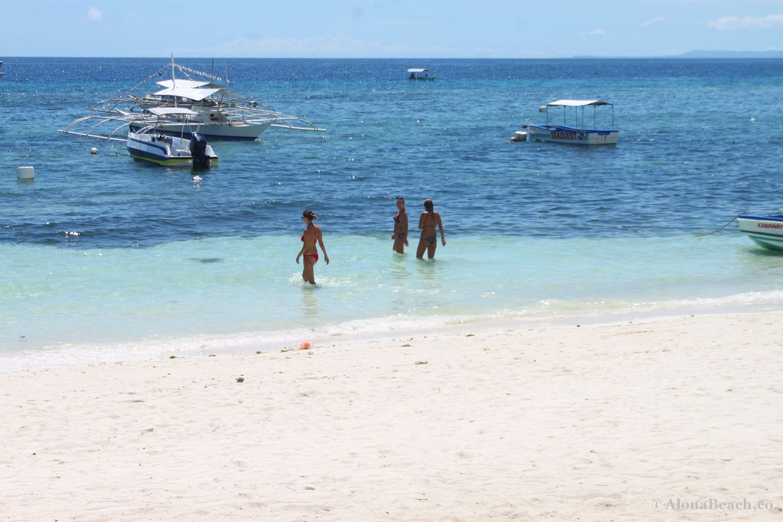 Language In 45 And 47 Stella Street: Bohol Scuba Diving In Alona Beach